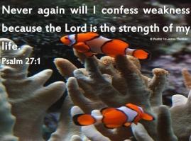 Psalm 27-1